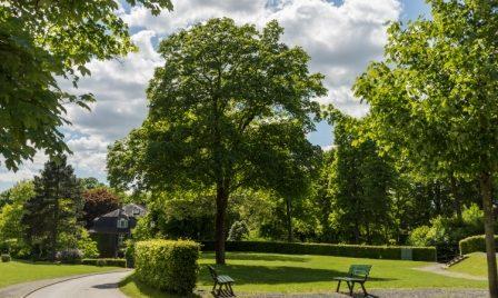 Das Gelände des Schlossbergs lädt zum Spazieren und Schlendern ein