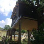 Das Baumhauszimmer