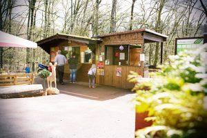 Ab der Saisoneröffnung im März 2019 werden Kiosk und WildparkStuben die kleinen und großen Gäste mit kulinarischen Leckereien versorgen.