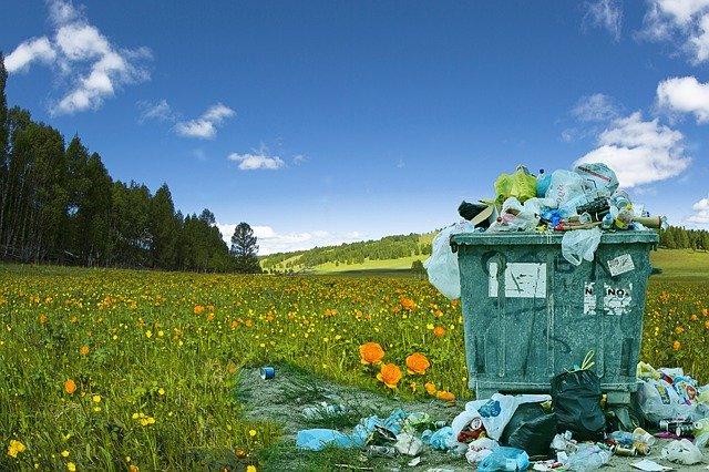 Ein überquellender Müllcontainer auf einem Wiesenstück am Waldrand; Quelle: Pixabay