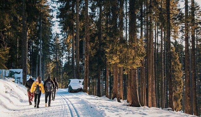 Eine Winterwanderung