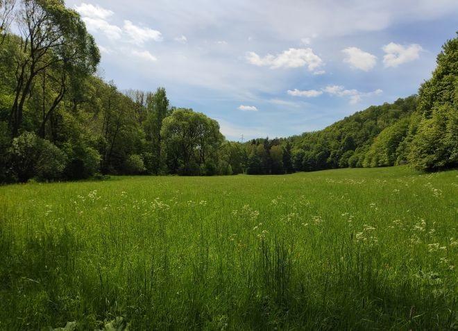 Flurbereinigung Nanzenbach